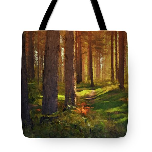 Maine Forest Sunset Tote Bag by David Dehner