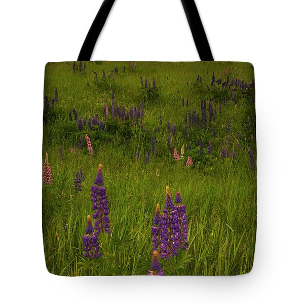 Maine Lupines And Home After Rain And Storm Tote Bag