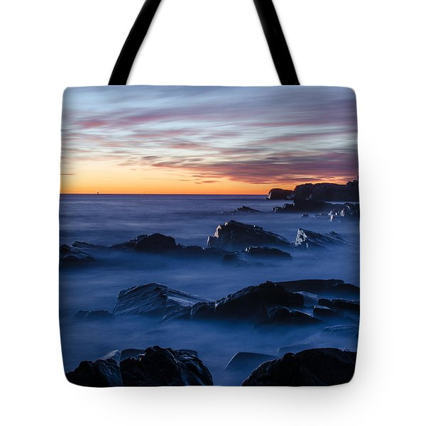 Maine Tote Bag by Paul Noble