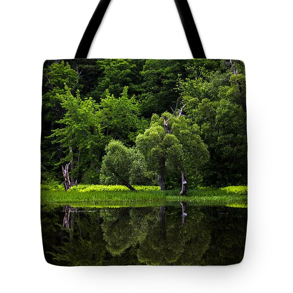 Maine Reflections Tote Bag