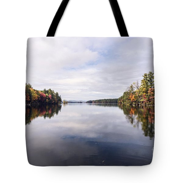 Tote Bag featuring the photograph Mainer's Fall by Anthony Baatz