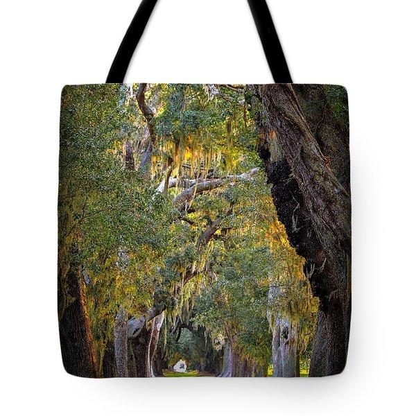 Majestic Ave Of Oaks St Simons Island Ga Tree Art Tote Bag