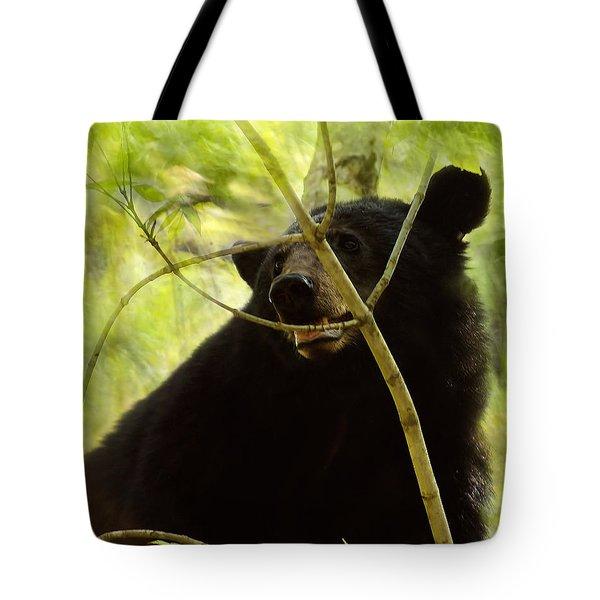 Majestic Black Bear Tote Bag
