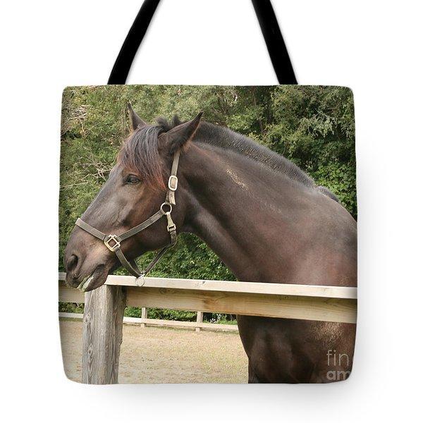 Majestic Horse  Tote Bag