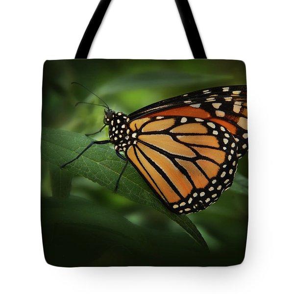 Majestic Monarch Tote Bag