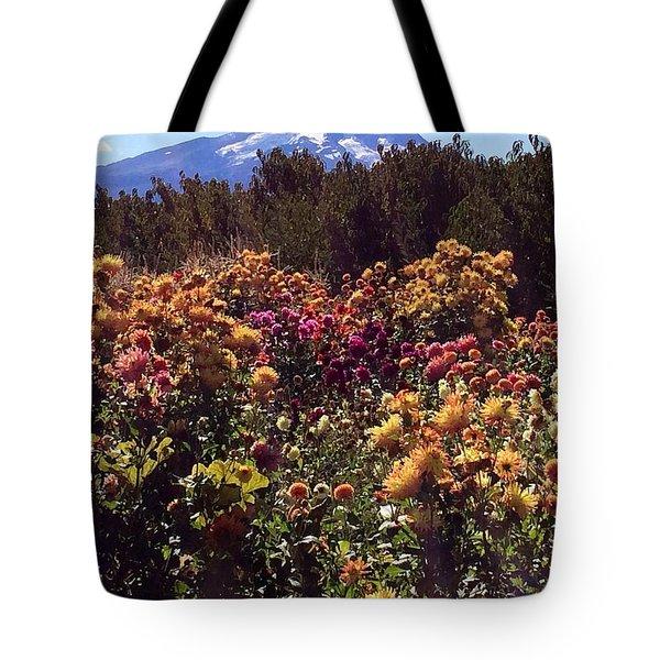 Majestic Mount Hood  Tote Bag