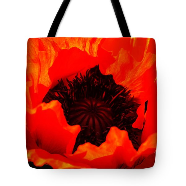 Tote Bag featuring the photograph Majestic Poppy by Baggieoldboy