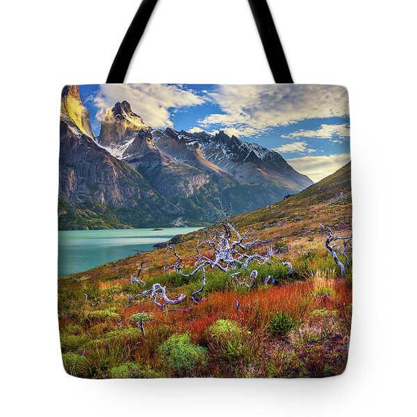 Majestic Torres Del Paine Tote Bag