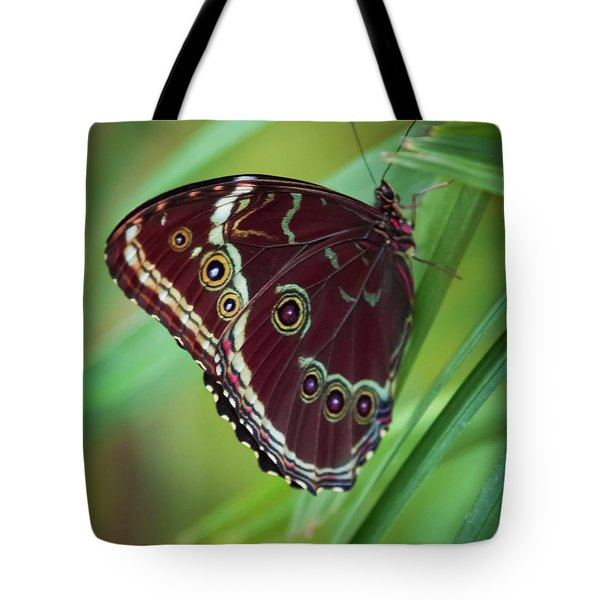 Majesty Of Nature Tote Bag by Karen Wiles