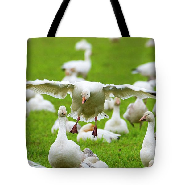 Tote Bag featuring the photograph Make Room by Mike Dawson