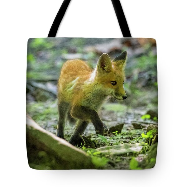 Tote Bag featuring the photograph Making His Way Through The Rocks by Dan Friend