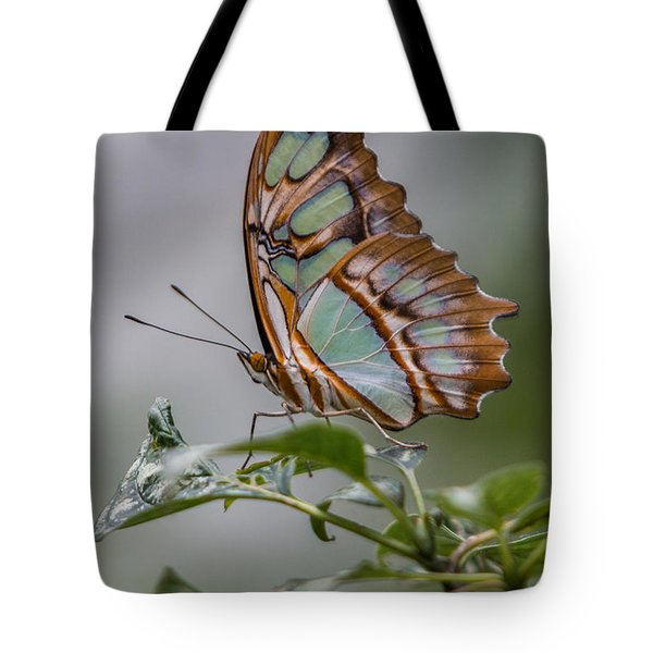 Malachite Butterfly Profile Tote Bag
