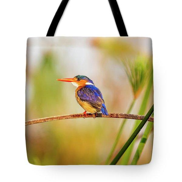 Malachite Kingfisher Hunting Tote Bag