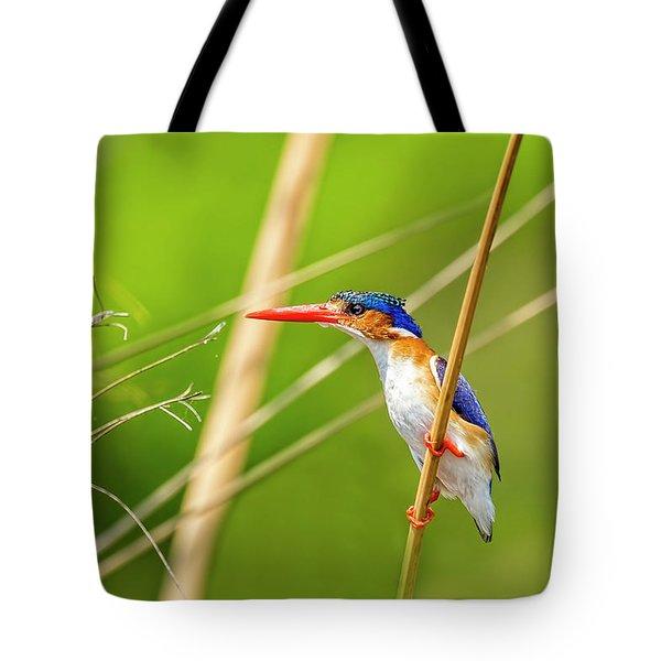 Malalchite Kingfisher Tote Bag