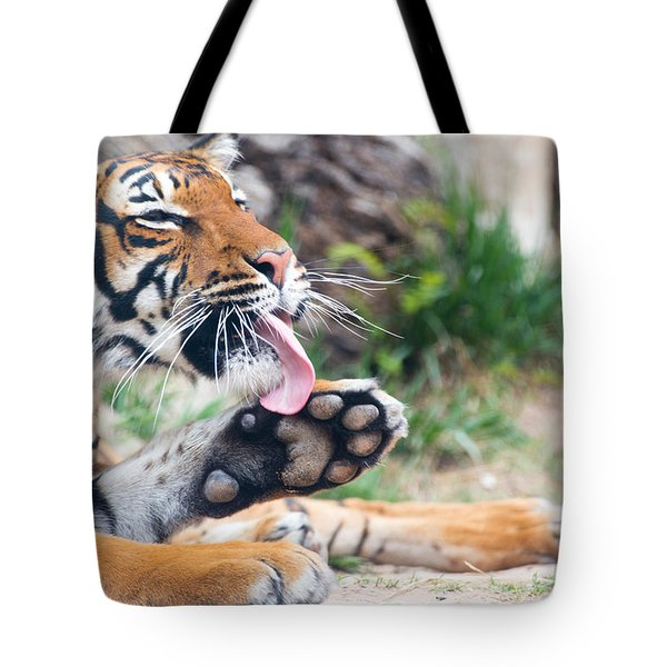 Malayan Tiger Grooming Tote Bag
