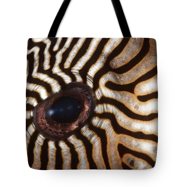 Malaysia Pufferish Eye Tote Bag by Ed Robinson - Printscapes