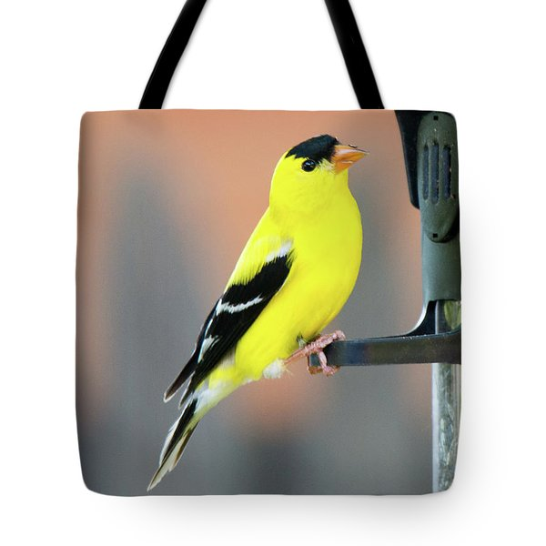 Male American Goldfinch Tote Bag