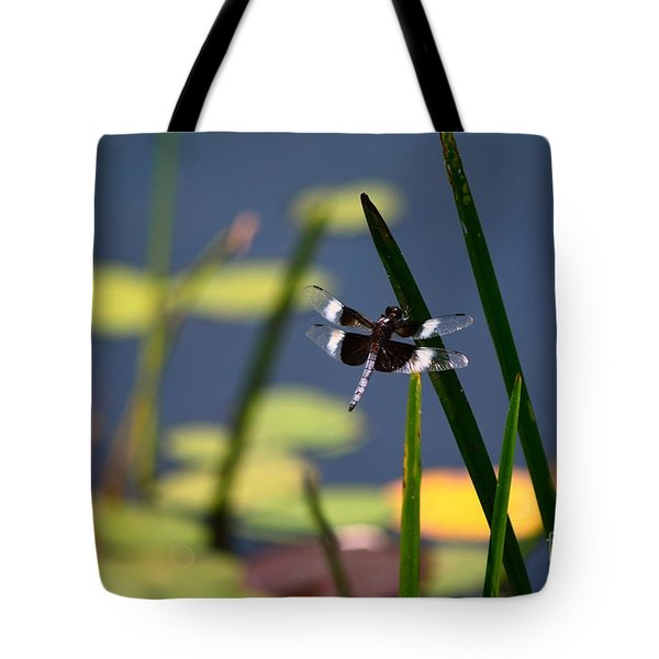 Tote Bag featuring the photograph Male Broad-bodied Chaser by Brenda Bostic