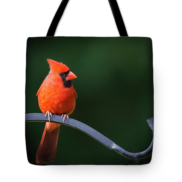 Male Cardinal At The Feeder Tote Bag