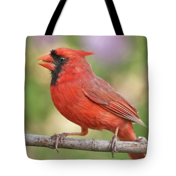Male Cardinal In Spring Tote Bag