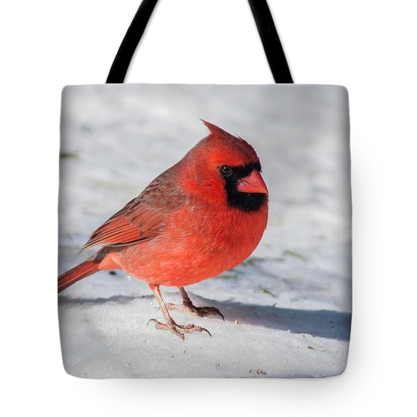 Male Cardinal In Winter Tote Bag