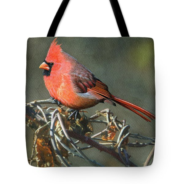 Male Cardinal Tote Bag by Ken Everett