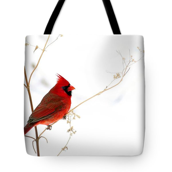 Male Cardinal Posing In The Snow Tote Bag