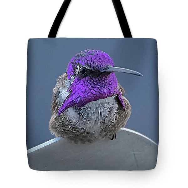 Male Costas Hummingbird On Sign  Tote Bag by Anne Rodkin