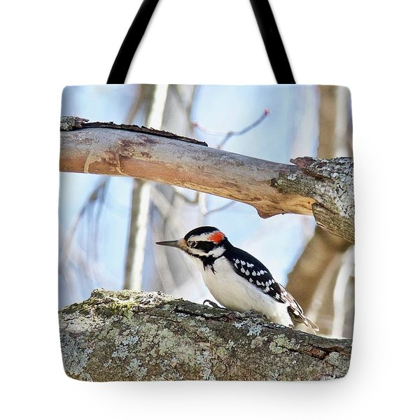 Tote Bag featuring the photograph Male Downey Woodpecker 1112 by Michael Peychich