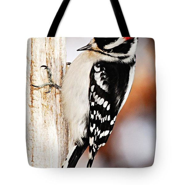 Male Downy Woodpecker 3 Tote Bag by Larry Ricker