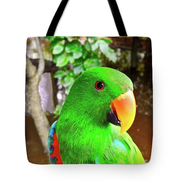 Male Eclectus Parrot II Tote Bag