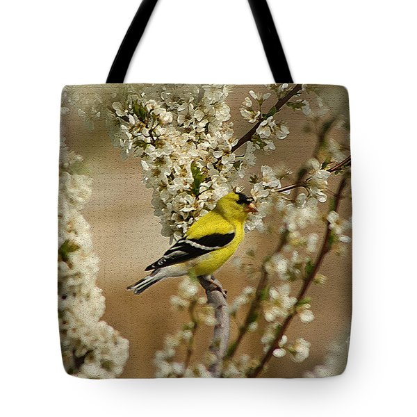 Male Finch In Blossoms Tote Bag by Cathy  Beharriell