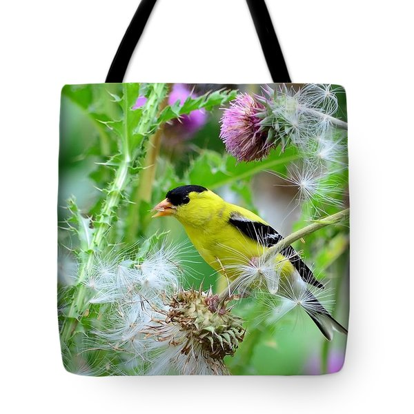 Male Goldfinch Tote Bag