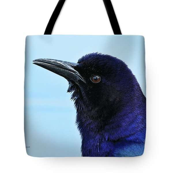 Tote Bag featuring the photograph Male Grackle Beauty by Deborah Benoit