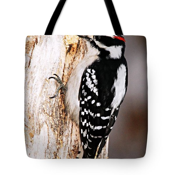 Male Hairy Woodpecker Tote Bag by Larry Ricker