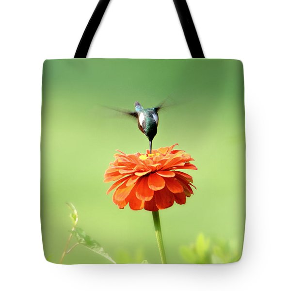 Male Hummingbird Tote Bag