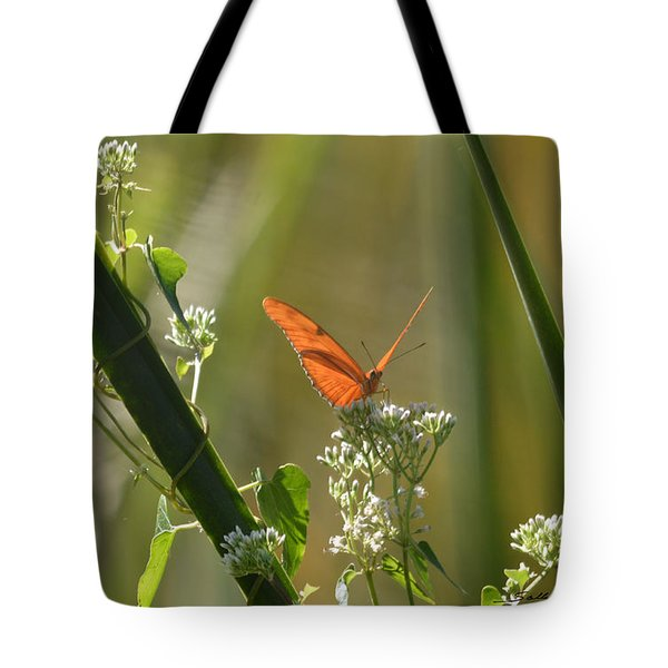 Tote Bag featuring the pyrography Male Julia Heliconia Butterfly by Sally Sperry