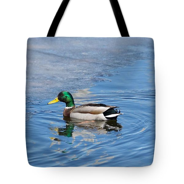 Tote Bag featuring the photograph Male Mallard Duck by Michael Peychich