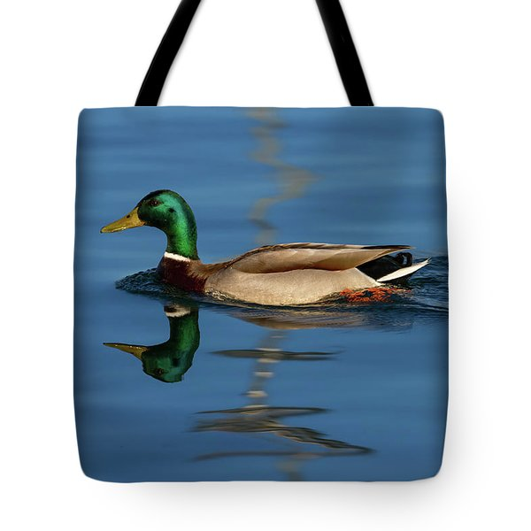 Male Mallard Or Wild Duck, Anas Platyrhynchos, Portrait Tote Bag