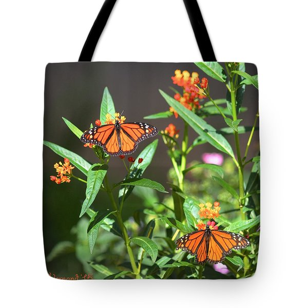 Male Monarch Butterflies Tote Bag