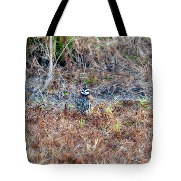 Male Quail In Field Tote Bag