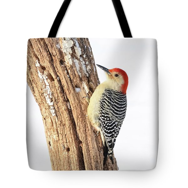 Tote Bag featuring the photograph Male Red-bellied Woodpecker by Paul Miller