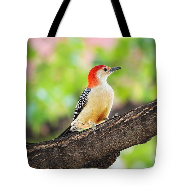 Male Red-bellied Woodpecker Tote Bag
