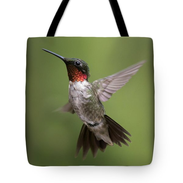 Tote Bag featuring the photograph Male Ruby Throated Hummingbird by David Lester