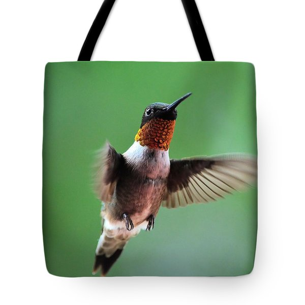 Male Ruby-throated Hummingbird Tote Bag