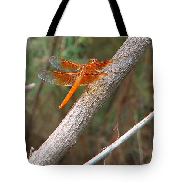 Male Skimmer Dragonfly Tote Bag