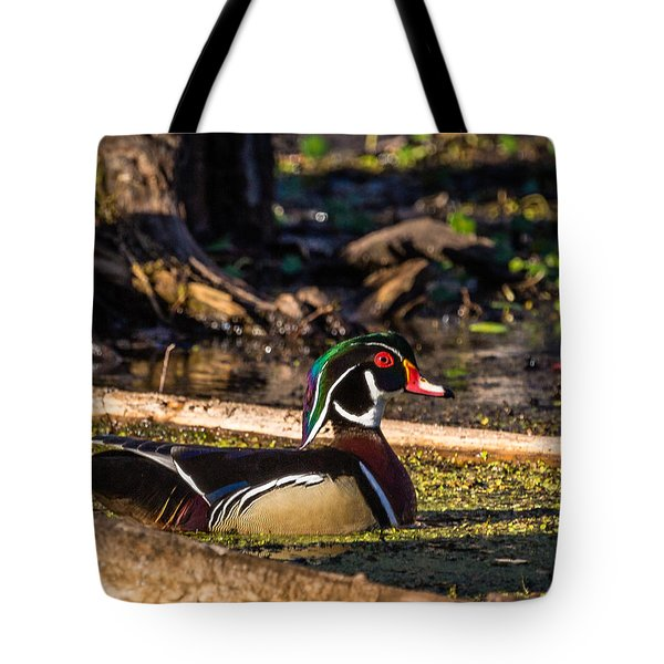 Tote Bag featuring the photograph Male Wood Duck by Gregory Daley  PPSA