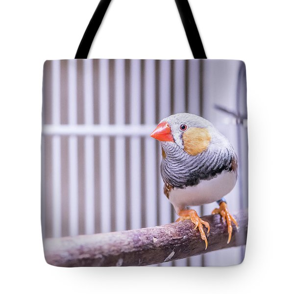 Male Zebra Finch Tote Bag