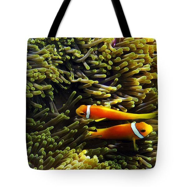 Tote Bag featuring the photograph Maledives Clown Fish by Juergen Held