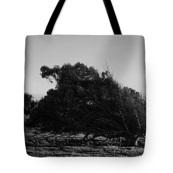 Tote Bag featuring the photograph Malformed Treeline by Clayton Bruster